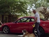 Le chien, meilleur ami de la Ford Mustang !